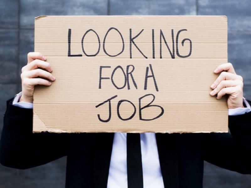 วิธีการหางานสำหรับนักศึกษาจบใหม่